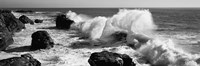 Waves breaking on the coast, Santa Cruz, California (black and white) Fine Art Print