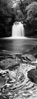 Waterfall In A Forest, Thomason Foss, Goathland, North Yorkshire, England, United Kingdom (black and white) by Panoramic Images - various sizes