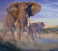 Hold Em and Fold Em - elephants by Cory Carlson - various sizes
