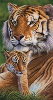 Tender Moments by Cory Carlson - various sizes