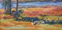 Splendor In The Marsh by Cory Carlson - various sizes