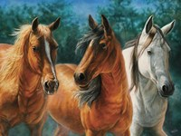 Trio by Cory Carlson - various sizes