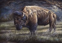Spirit Of The Plains (Bison) Fine Art Print