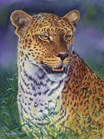 Leopard by Cory Carlson - various sizes