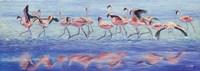 Ngorongoro Dance by Cory Carlson - various sizes, FulcrumGallery.com brand
