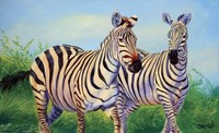 Zebras by Cory Carlson - various sizes