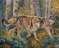 "20"" x 16"" Wolf Pictures"