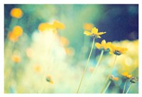In the Meadow Fine Art Print
