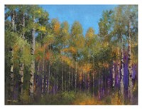 Aspen Autumn Fine Art Print