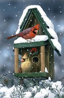 Cardinals And Birdhouse In Snow by William Vanderdasson - various sizes