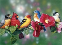 Songbirds On Hollyhock Fine Art Print