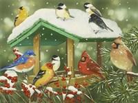Winter Treats Fine Art Print