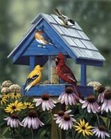 Birdhouse/Birds/Coneflower Fine Art Print