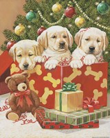 Holiday Puppies by William Vanderdasson - various sizes