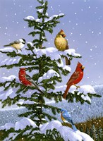 Songbirds On A Limb by William Vanderdasson - various sizes