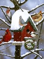 Red Birdhouse Fine Art Print