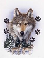 Wolf Montage/ Winter Fine Art Print