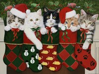 Christmas Kittens Fine Art Print