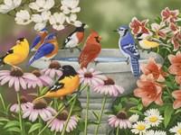 Garden Birdbath by William Vanderdasson - various sizes