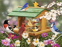 Backyard Birds Spring Feast Fine Art Print
