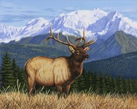 Surveying His Domain by William Vanderdasson - various sizes