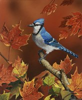 Fall Colors by William Vanderdasson - various sizes