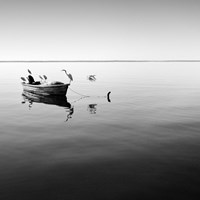 Boat and Heron II by Moises Levy - various sizes
