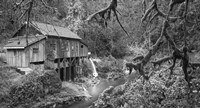Cedar Creek Grist Mill B&W Fine Art Print