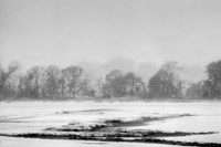Blizzard by Geoffrey Ansel Agrons - various sizes