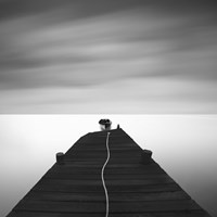 Free by Moises Levy - various sizes