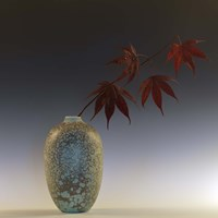 Still Life with Japanese Maple and Raindrops Fine Art Print