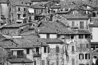 San Griminiano Texture by Moises Levy - various sizes - $28.99