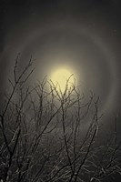 The Moon is the North Wind's Cookie Fine Art Print