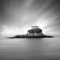 Rat Island by Moises Levy - various sizes