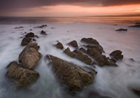 Monterey (97) by Moises Levy - various sizes