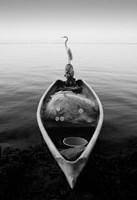 Canoe And A Heron Fine Art Print