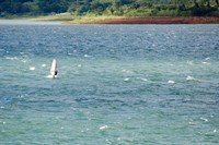 Wind surfer in a lake, Arenal Lake, Guanacaste, Costa Rica Fine Art Print