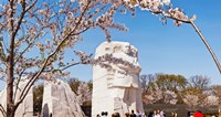 Tourists at Martin Luther King Jr. National Memorial, Washington DC, USA by Panoramic Images - various sizes - $48.49