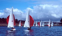 Dragon regatta in Baie De Douarnenez, Finistere, Brittany, France by Panoramic Images - various sizes