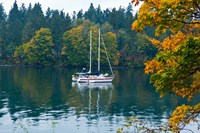 Sailboats in a lake, Washington State, USA by Panoramic Images - various sizes - $54.99