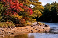Autumn Trees, Musquash River, Muskoka, Ontario, Canada by Panoramic Images - various sizes