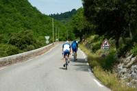 Bicyclists on the road, Bonnieux, Vaucluse, Provence-Alpes-Cote d'Azur, France Fine Art Print