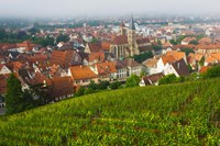 City viewed from vineyard, Esslingen-Am-Neckar, Baden-Wurttemberg, Germany by Panoramic Images - various sizes