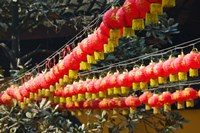 Red lanterns at a temple, Jade Buddha Temple, Shanghai, China by Panoramic Images - various sizes, FulcrumGallery.com brand
