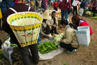 People buying vegetables at a traditional town market, Xizhou, Erhai Hu Lake Area, Yunnan Province, China Fine Art Print