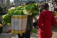 People at a vegetable market, Xizhou, Erhai Hu Lake Area, Yunnan Province, China Fine Art Print