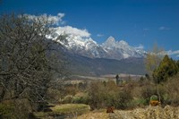 Jade Dragon Snow Mountain viewed from Baisha, Lijiang, Yunnan Province, China Fine Art Print