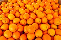 Close-up of oranges, Santa Paula, Ventura County, California, USA Fine Art Print