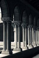 Cloister of a church, Cloitre des Jacobins, Eglise des Jacobins, Toulouse, Haute-Garonne, Midi-Pyrenees, France by Panoramic Images - various sizes