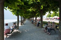 People sitting on benches among trees at lakeshore, Lake Como, Cernobbio, Lombardy, Italy Fine Art Print